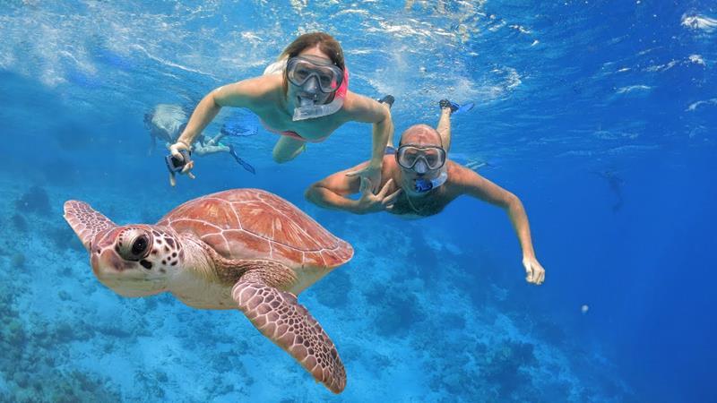 24-Best-Snorkeling-Spots-in-the-Caribbean-title